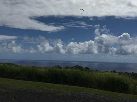 Hamakua Coast Ocean View at Botanical World Adventures