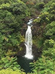 Big Island Waterfalls Hawaii - Kamaee Falls located at Botanical World Adventrues 16 mile north of hilo, Big Island