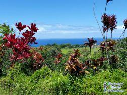 Hawaii Ziplines