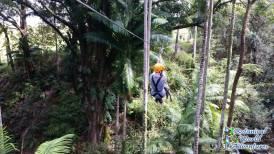 Zip Line Hawaii
