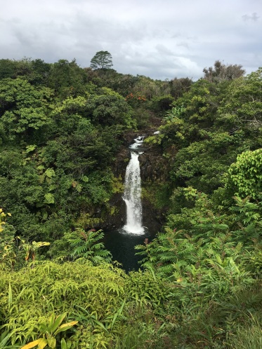 Located in Botanical World Adventure - Hakalau Big Island Hawaii