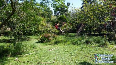 Zipline Big Island Hawaii ZiplineBigIsland.com